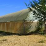 New Polly tunnel at Ndururi School